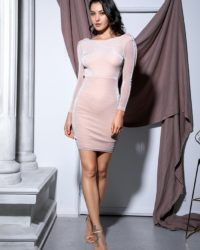 Apricot Bodycon Glitter Elastic Long Sleeve Party Dress LE99098